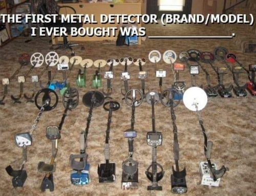 What was your first Metal detector survey results