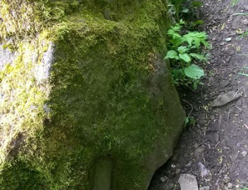 INCREDIBLE CARVED SWORD FOUND IN STONE – UK