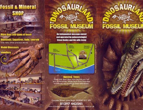 DINOSAURLAND – FOSSIL MUSEUM